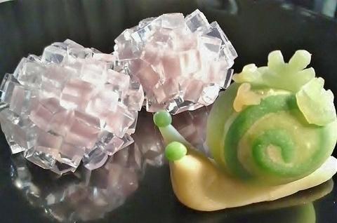 紫陽花と苔マイマイ 001.jpg